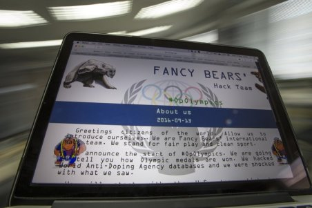 FANCY-BEAR-----800